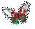 Ripped Torn Metal Butterfly Design With Welsh Wales CYMRU Motif External Vinyl Car Sticker 125x90mm